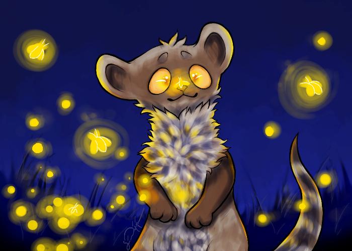 Featured image: Fireflies