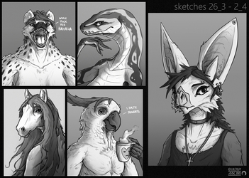 // anthro doodle tests