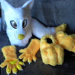 Siabus, the Cute Fox!