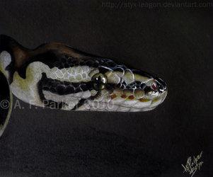 Samson the Snake