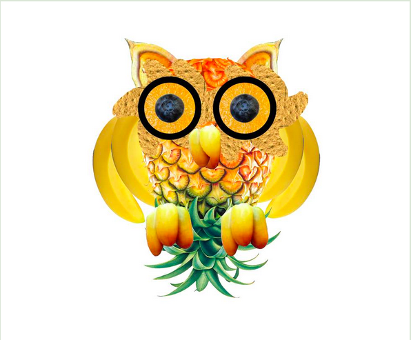 Featured image: Fruit Owl
