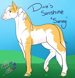 Dixie's Sunshine