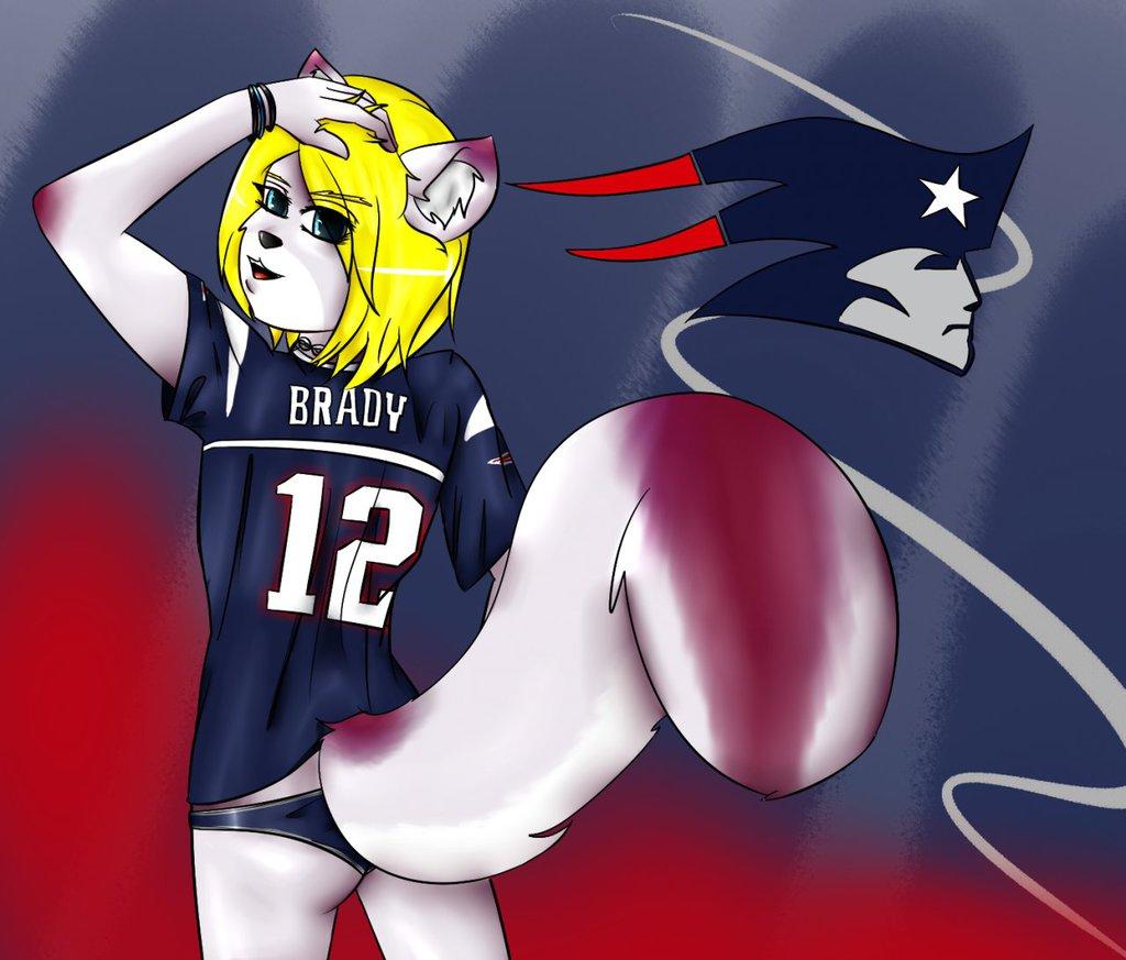 Patriots Fanboi