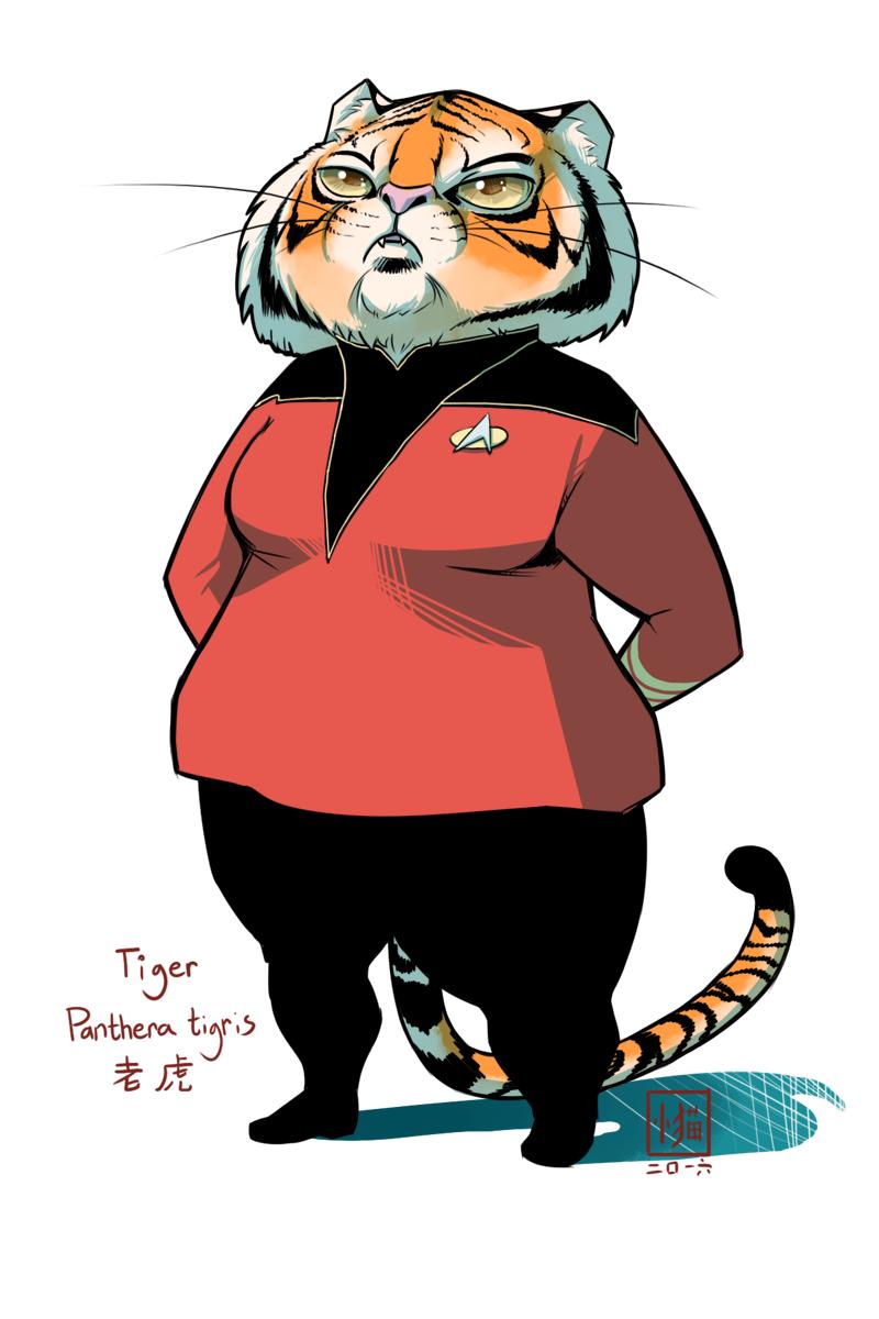 Tiger admiral