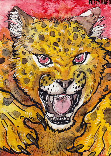 Angry jaguar- ACEO