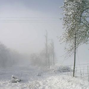 Snowfall [Silence]