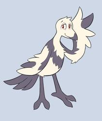 Sometimes you just gotta.... bird