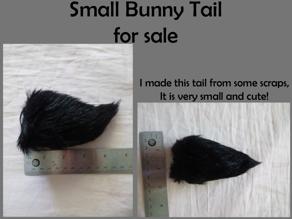 Most recent image: TAIL AUCTION (Furbuy)