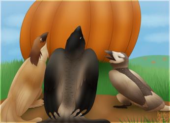 Pumpkin Explanation