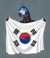 Lauren - South Korean Flag