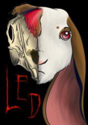 Gift: Half Skull Led
