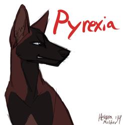 Pyrexiaaaa