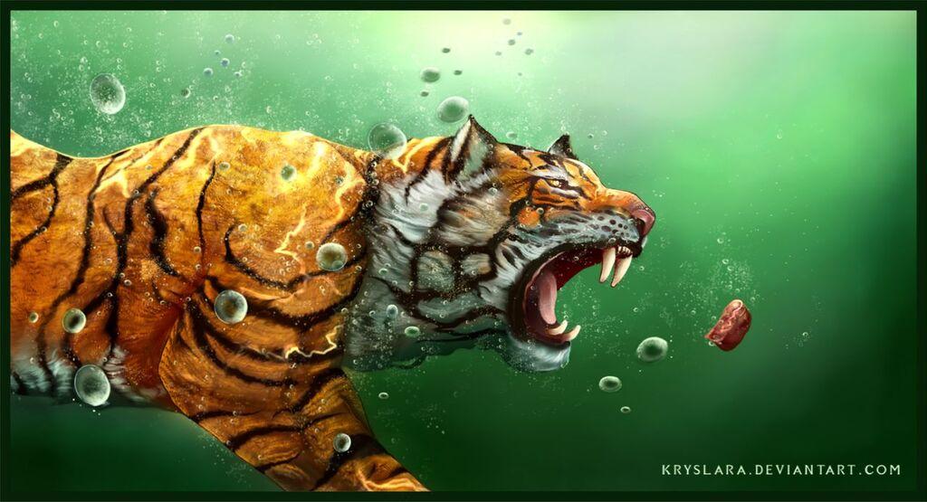 Most recent image: Big Fish or Tiger?