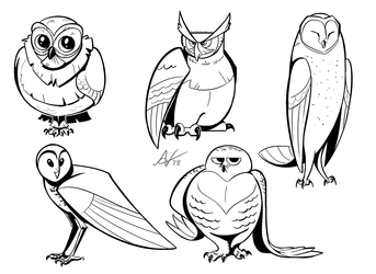 Inktober Day 19- Owl