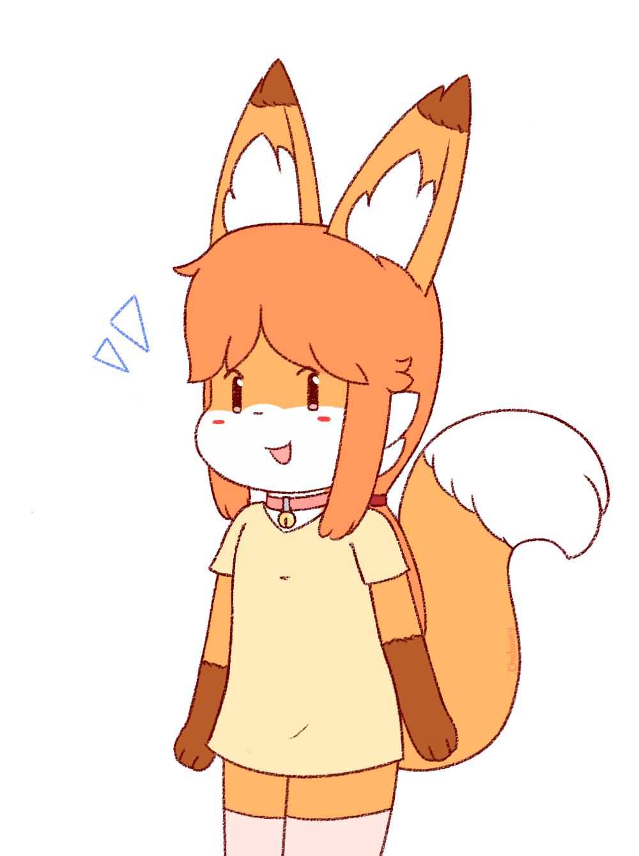 Most recent image: Good Feel Fox