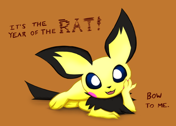 Pichu's Time to Shine