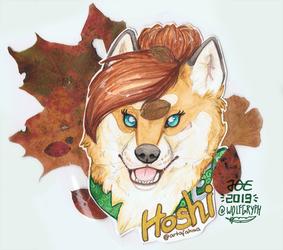 Badge - Ahma's Hoshi