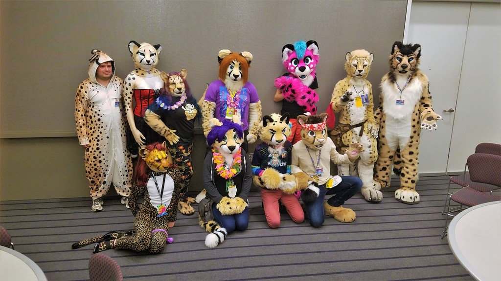 Anthrocon 2019 - Cheet & Greet Fursuiters - 16
