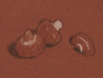 Art Academy: Mushrooms