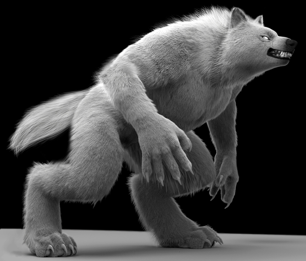 Most recent image: White Wolf