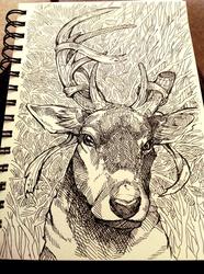 Prince of deer