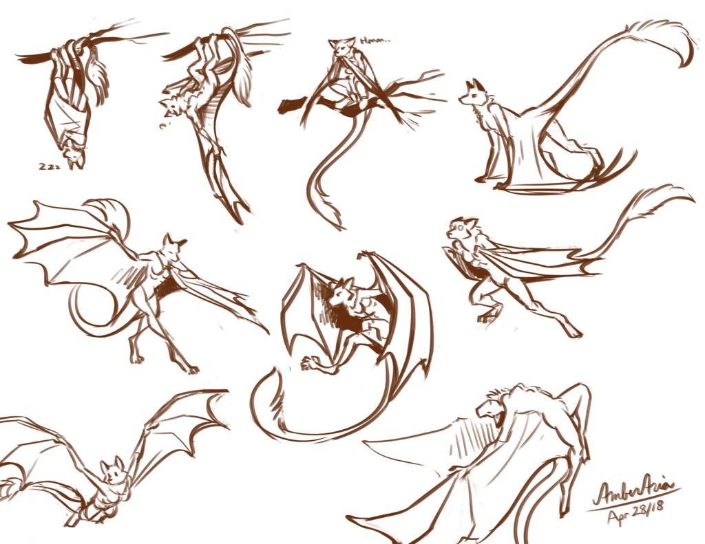 A Plethora of Batfox!