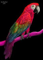 Blacklight Parrot
