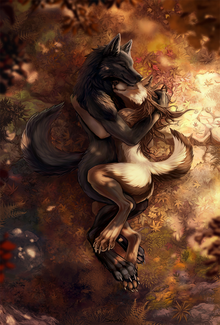 Most recent image: Autumn love