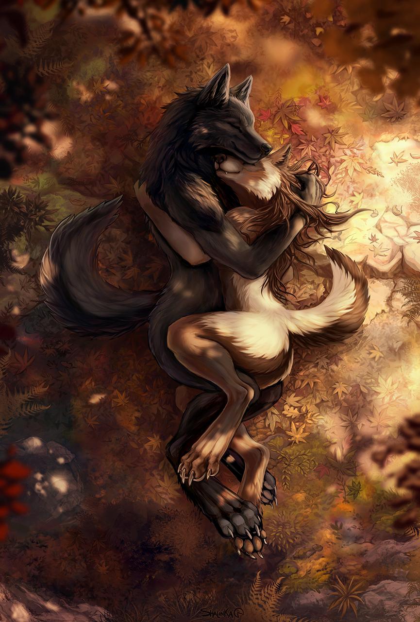 Most recent image: Autumn love