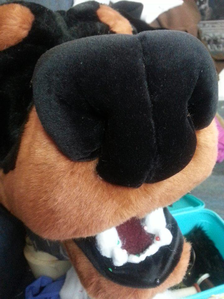 Rottie nose WIP