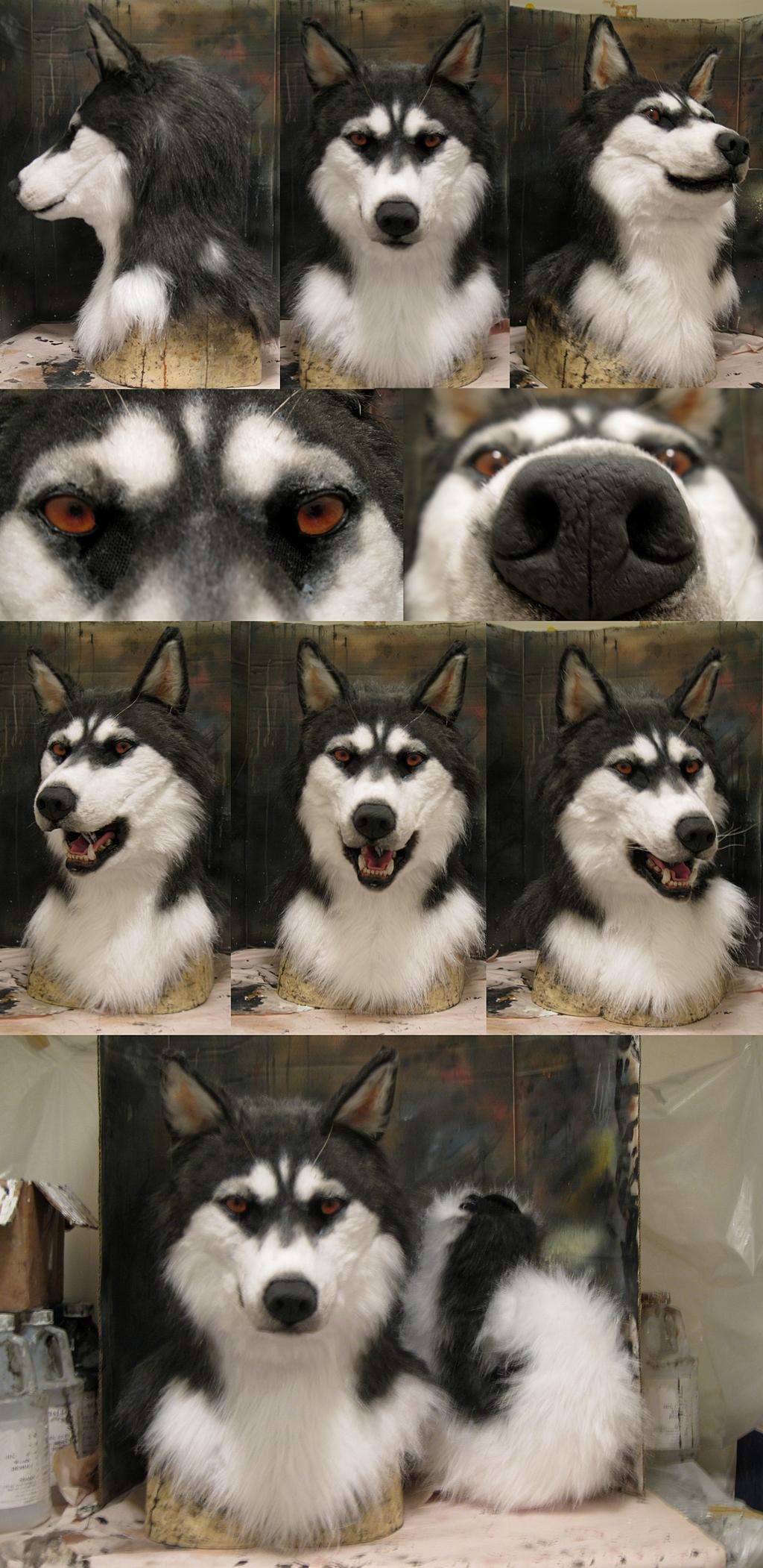 Husky mask!