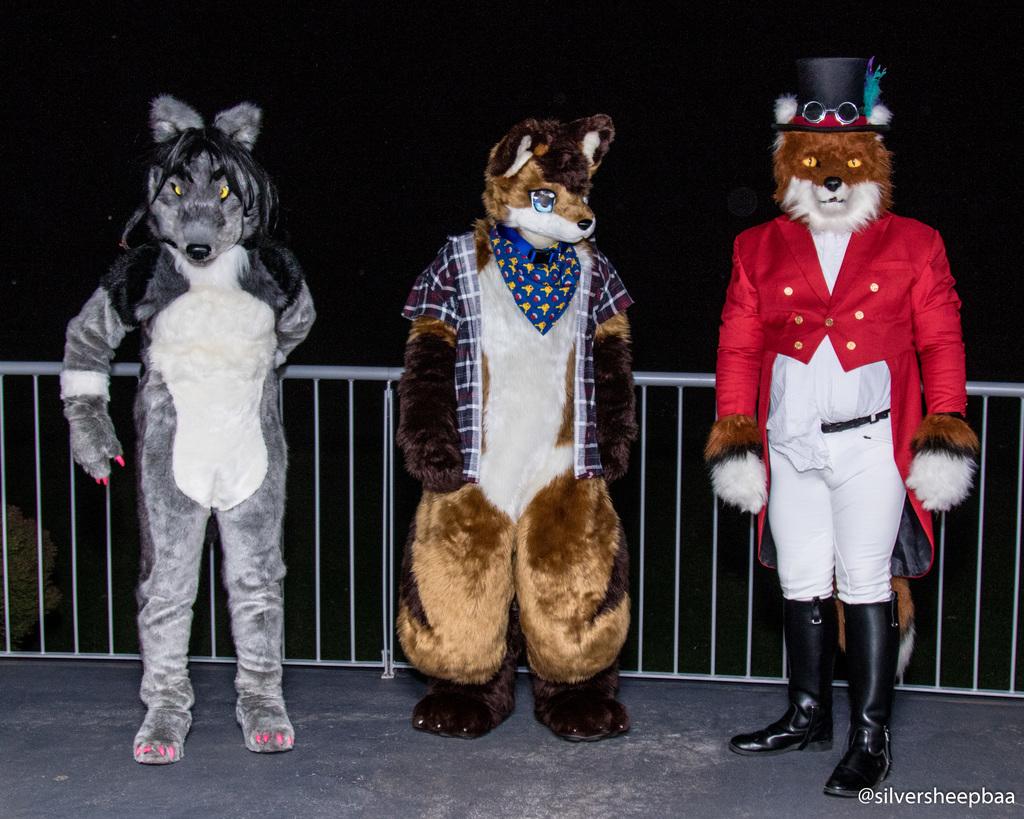 Fur4All 2017: Fox Hunting Fox