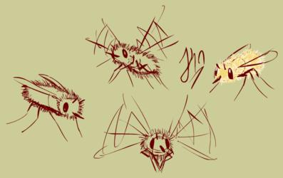 Bumble flies