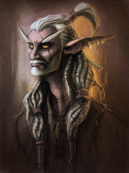 Aage the Pirate Night Elf