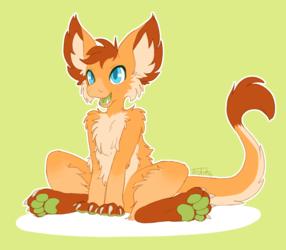 Orange Ferruit