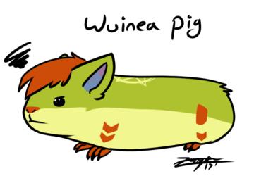 Wuinea Pig