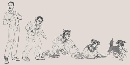 Bitten: Mutts and mongrels