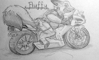 Racer Fluff