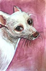 Dog Watercolor