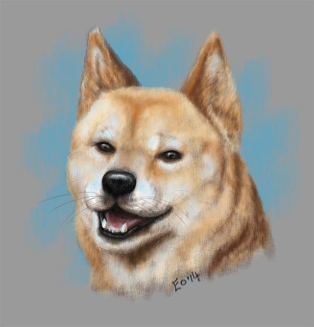 Much Dingo. Such Happy. Wow.