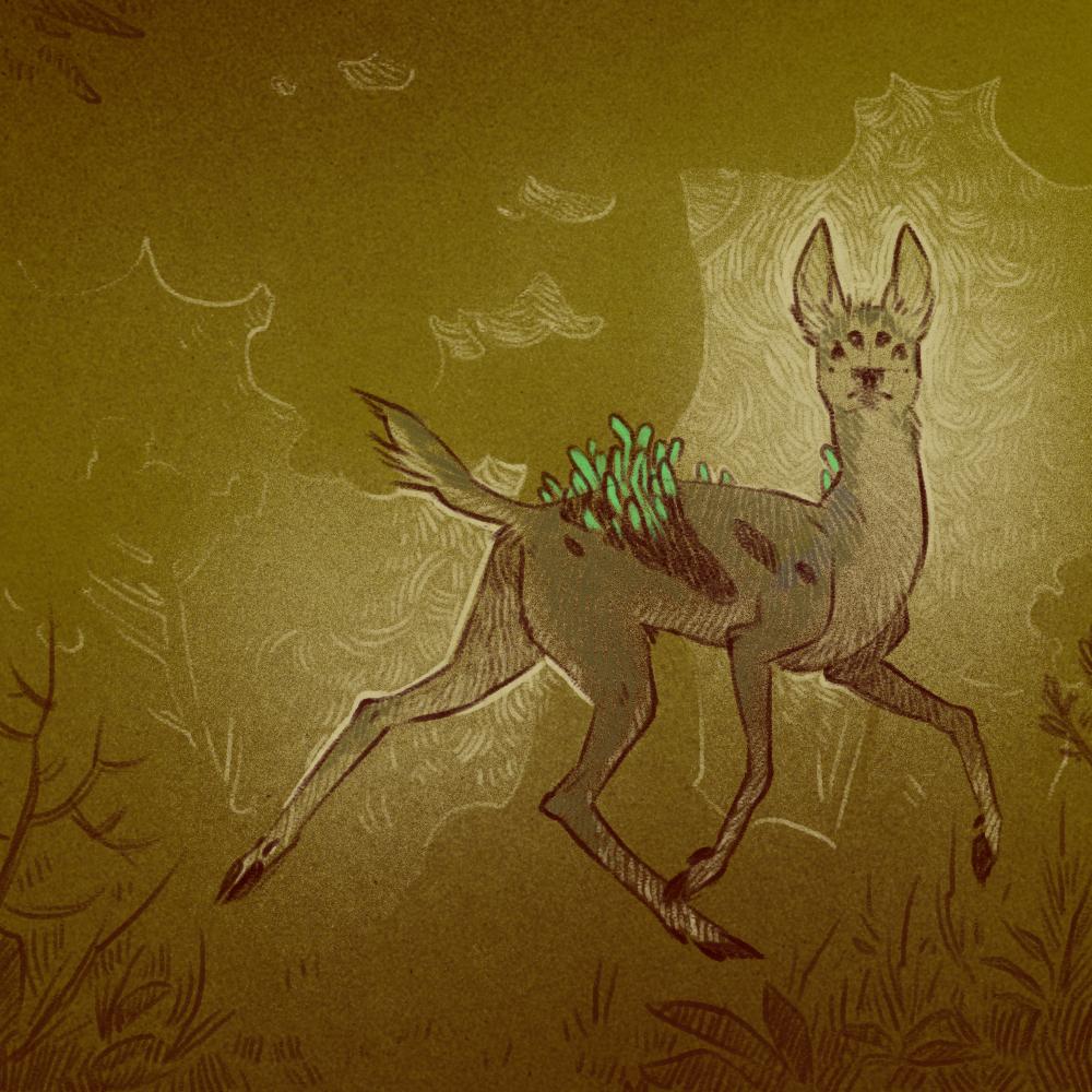 Boneworm infected deer 2 (Defans Amis)