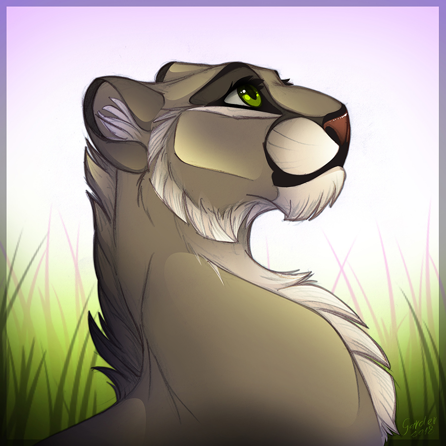 2018 Fluffy Old Lioness