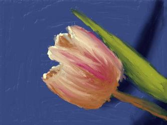 Art Academy: Tulip