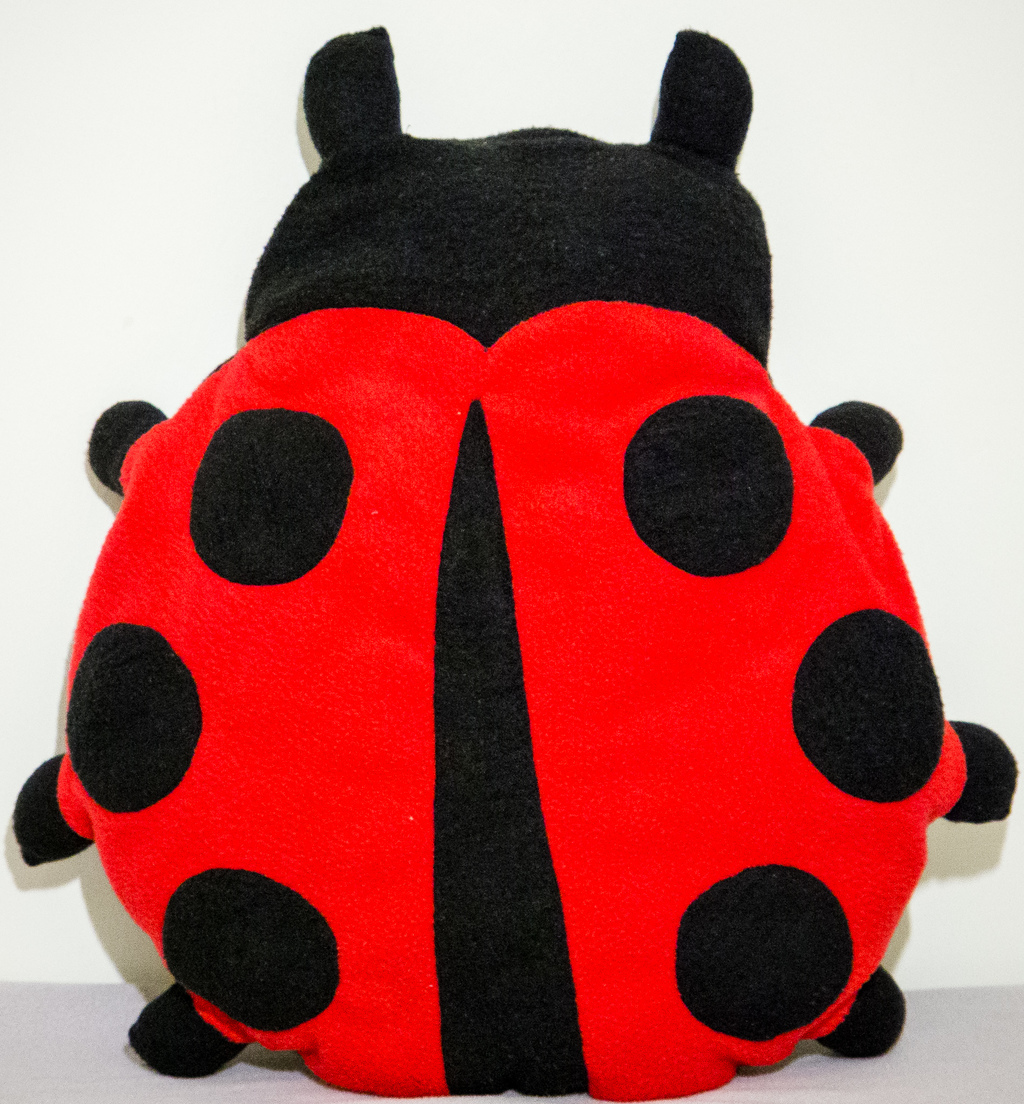 Most recent image: Ladybug pillow