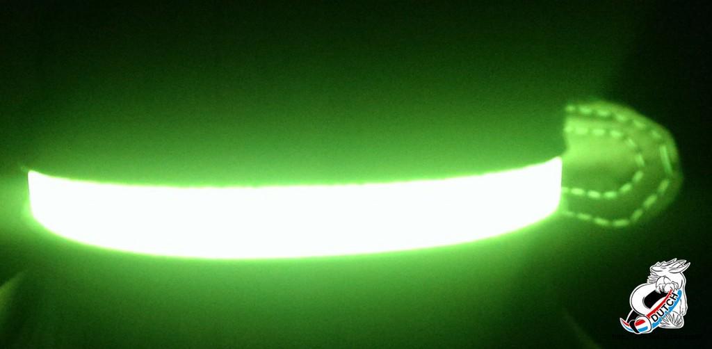 Most recent image: EL neon collar in the dark