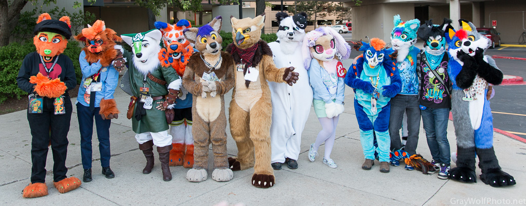 Anime Central Fuzzies