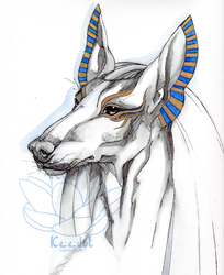 Portrait of Anubis.