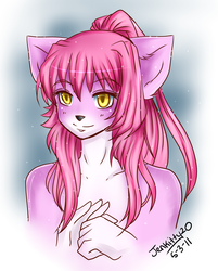 Gift Art for AkitoKit