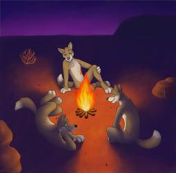 Dingo Triples