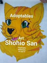 New method adoptables